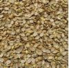 Picture of Coriander Seeds